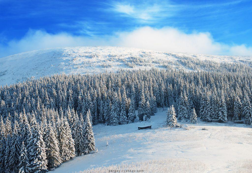 Сонячний зимовий день над Буковелем