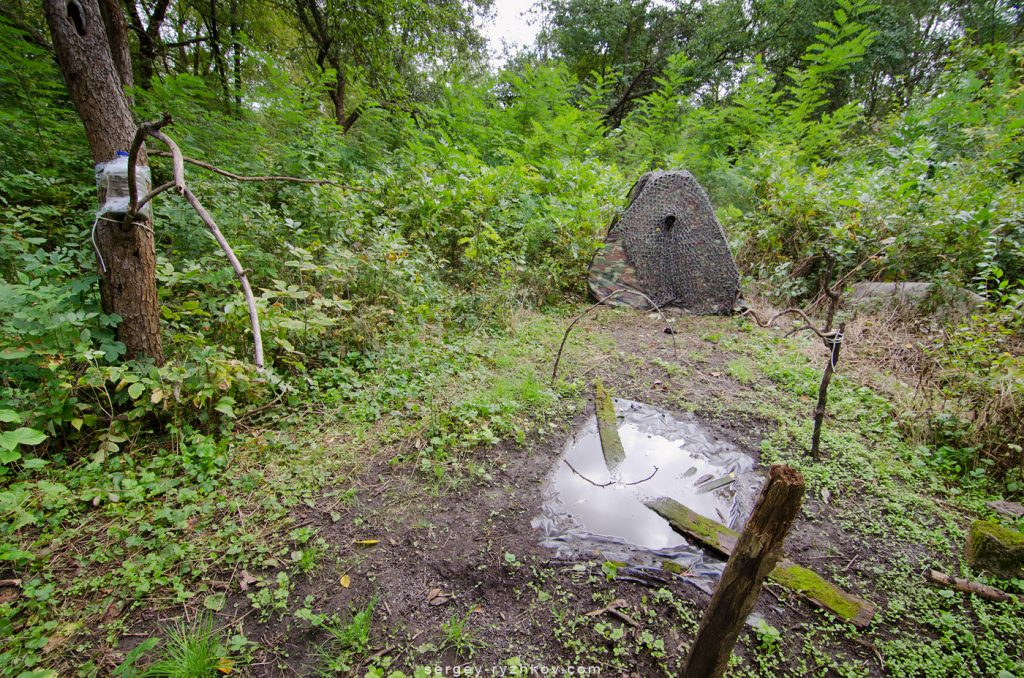 Місце в лісі для зйомки птахів