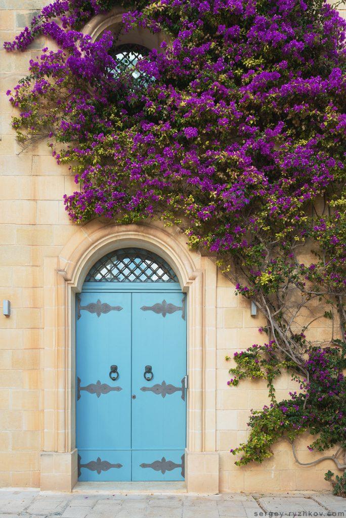 Двері з квітами на стіні