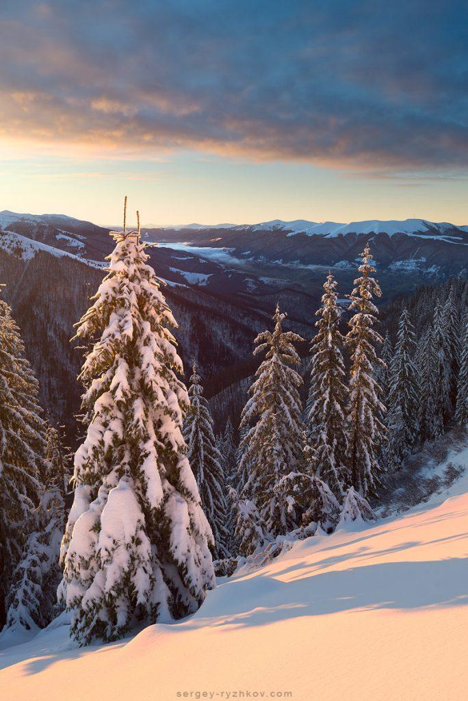 Ранковий ліс на фоні гірської долини