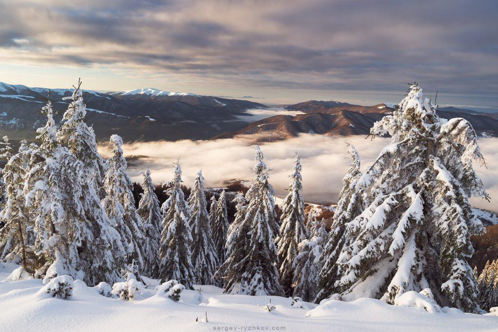 Ранковий туман зимою
