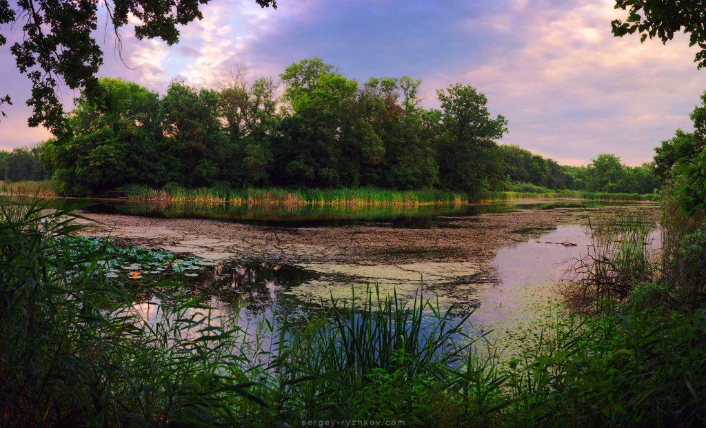 Панорамний вид на лісове озеро в заплаві річки Самари