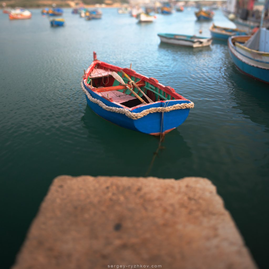 Tilt-shift photography of colurful boa