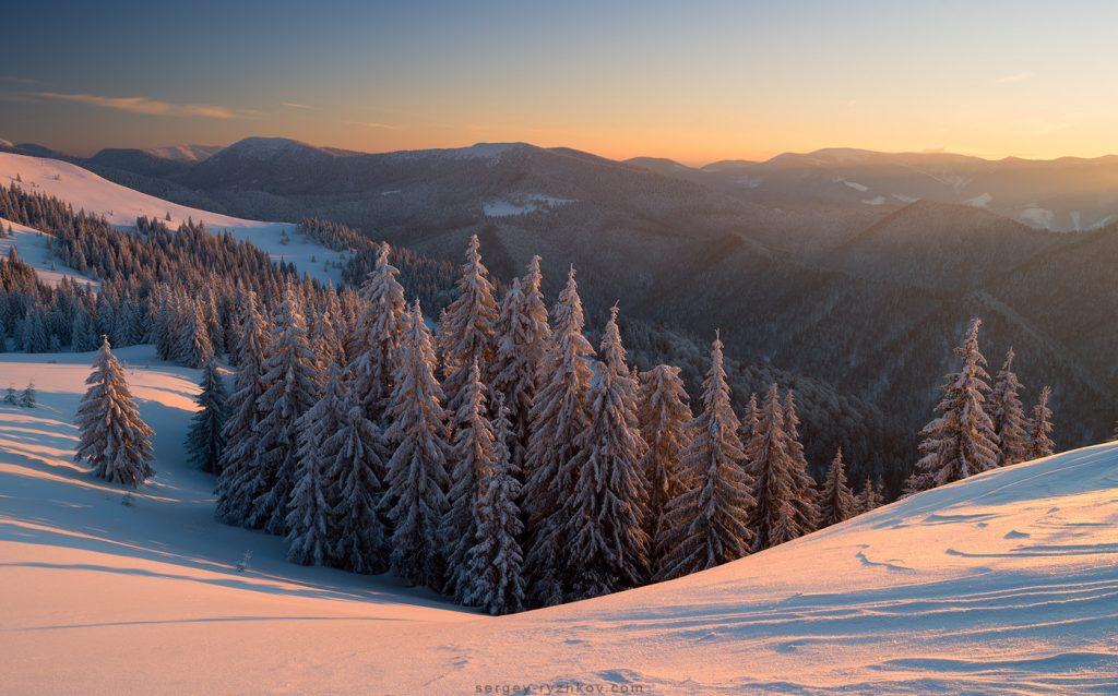 Зимовий засніжений ліс