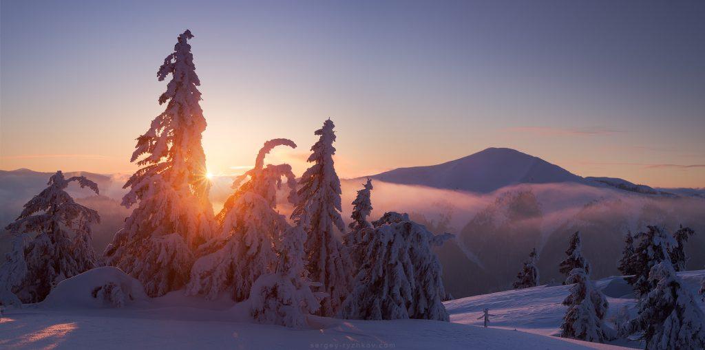 Зимовий карпатський ліс на фоні Стримби