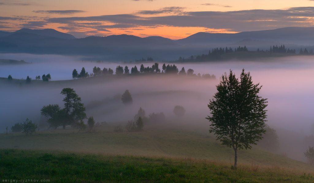 Туманний ранок у Лазещині. Літо в Карпатах