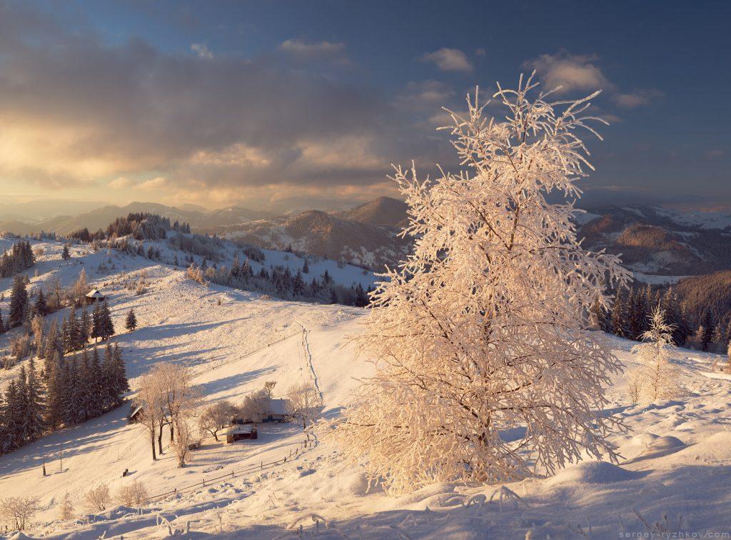 Краєвид зимової Буковини