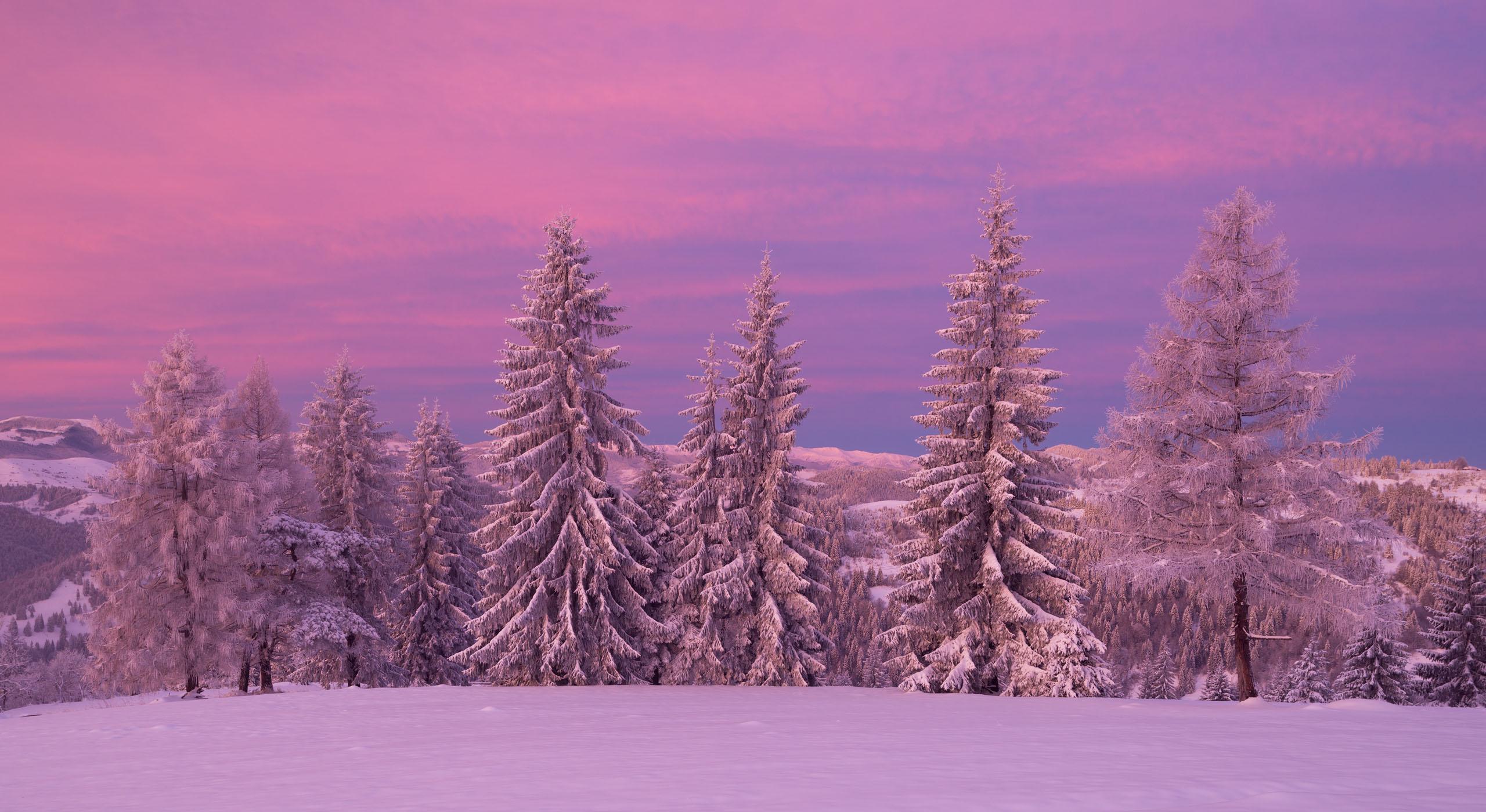 Winter in Pokytski Mountains