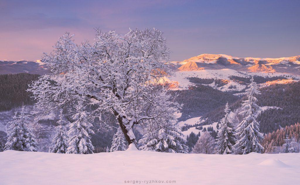 2. На фоні гора Скупова (Гринявські гори)