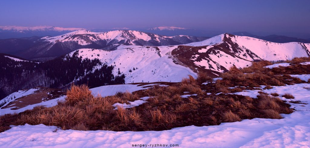 Snowy hills in twilight. Carpathians, Ukraine