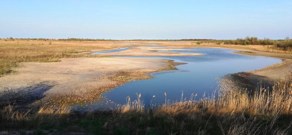 Низький рівень водни в плавнях