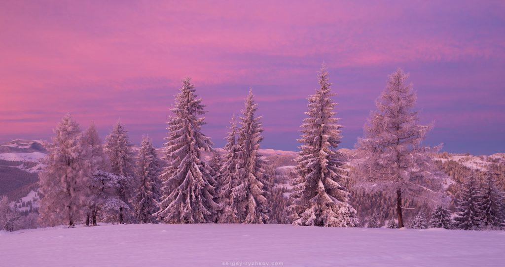 Панорама Покутських гір зимою