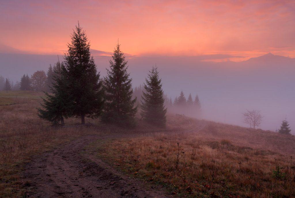 Ранкові тумани в Карпатах